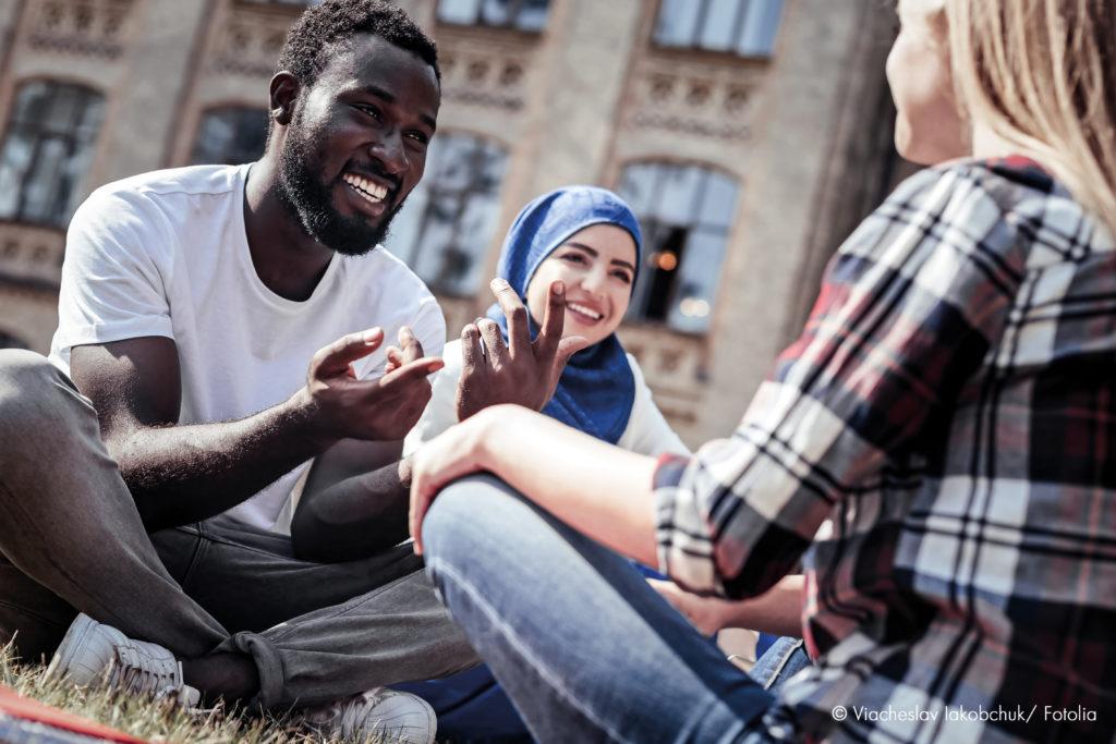 "Projektbild ""Interkulturelle Engagement-Beratung"""